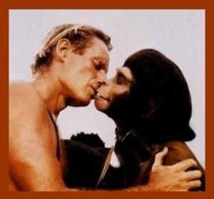 Hot monkey love.